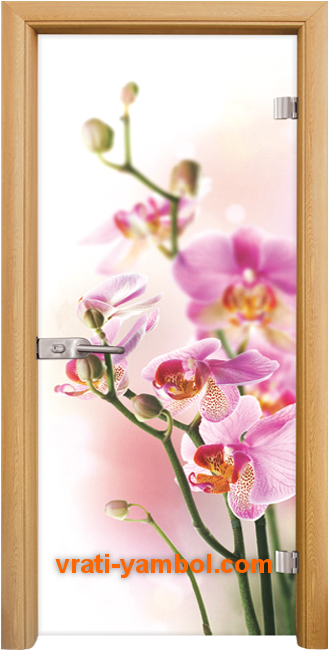 Стъклена интериорна врата модел Print G 13-2 с каса Светъл дъб