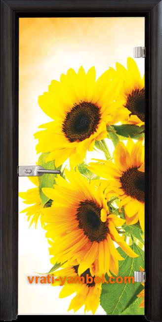 Стъклена интериорна врата модел Print G 13-4 с каса Венге