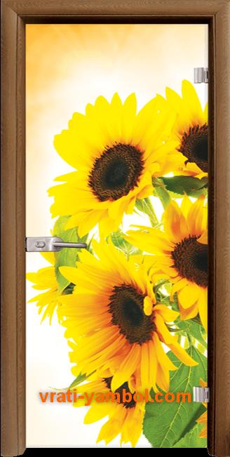 Стъклена интериорна врата модел Print G 13-4 с каса Златен дъб