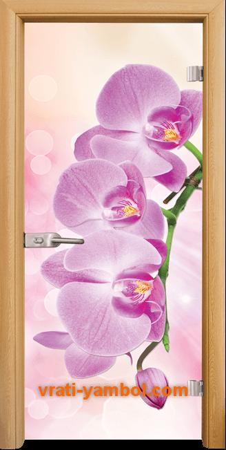 Стъклена интериорна врата модел Print G 13-3 Pink с каса Светъл дъб