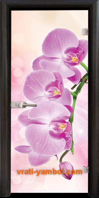 Стъклена интериорна врата модел Print G 13-3 Pink с каса Венге