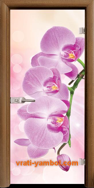 Стъклена интериорна врата модел Print G 13-3 Pink с каса Златен дъб