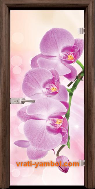 Стъклена интериорна врата модел Print G 13-3 Pink с каса Орех