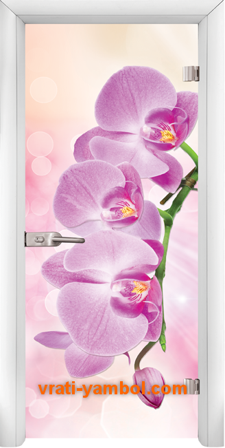 Стъклена интериорна врата модел Print G 13-3 Pink с каса Бяла
