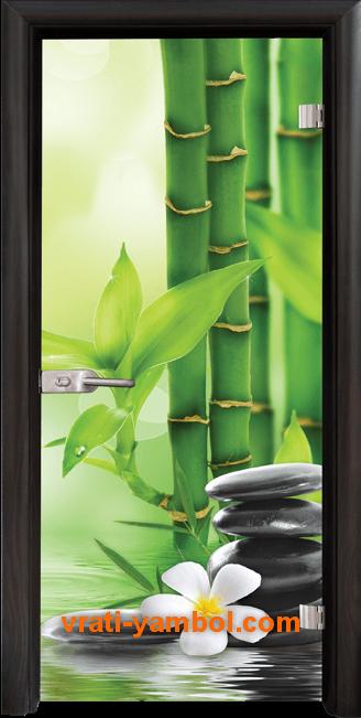 Стъклена интериорна врата модел Print G 13-9 с каса Венге